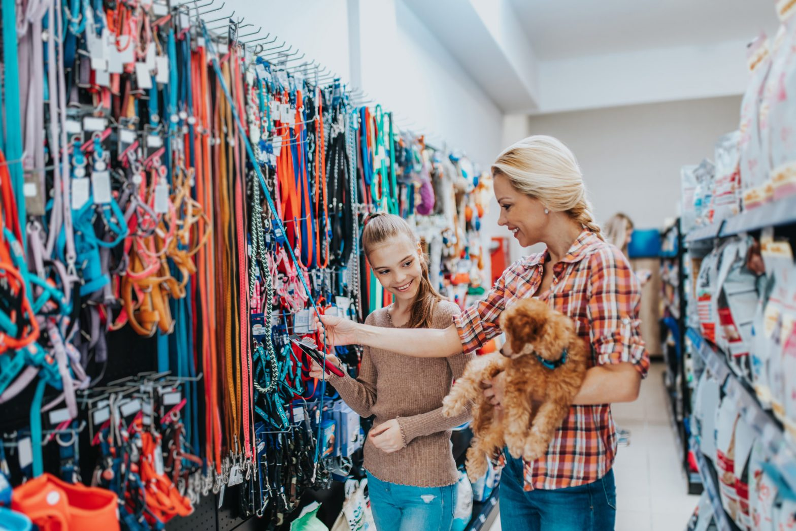 Shopping for Your Dog: Best Tips to Keep Them Happy